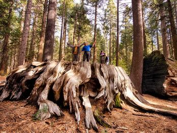 Fun Things to do in Summer in Calaveras County